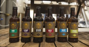 Musically inspired beers